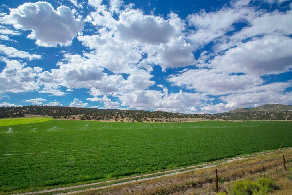 Farmy-Wide-Sky-V2-106efw